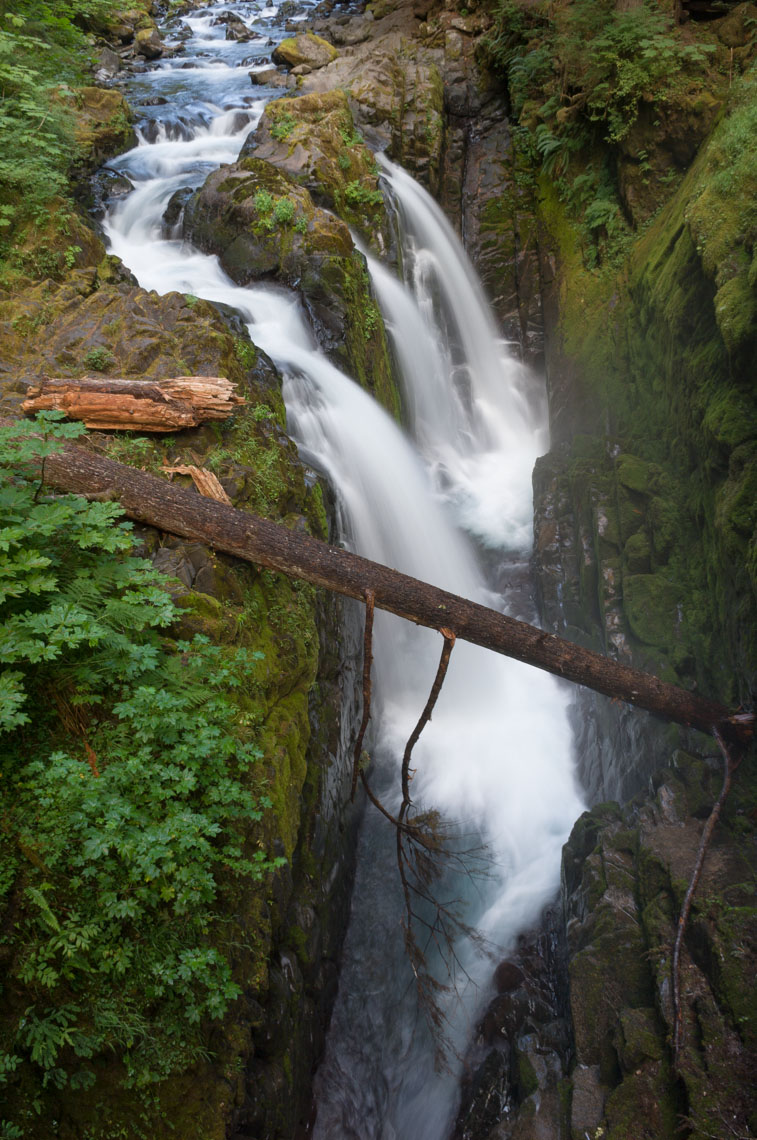Sol Duc Falls | Olympic NP Washington State